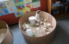 Second Class Biodiversity Chicken project