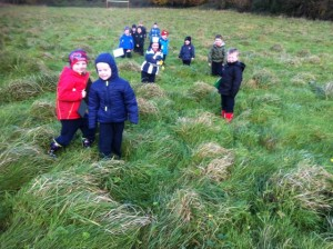 Junior Infants Autumn Walk
