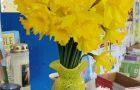 Senior Infants are ready for Spring!